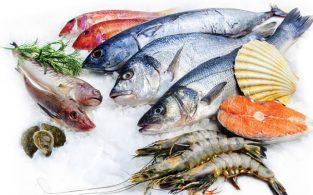 যেসব মাছ খেলে ক্যান্সারসহ নানান রোগের ঝুঁকি কমে