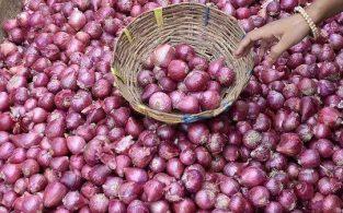 টিসিবি শনিবার থেকে ২৫ টাকা কেজিতে পেঁয়াজ বিক্রি করবে
